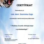 certyfikat-dominika-ozga-(5)